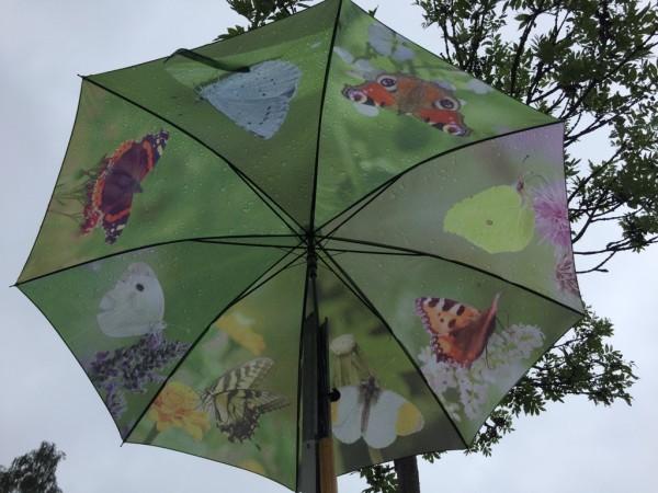 Regenschirm Motiv: Schmetterlinge