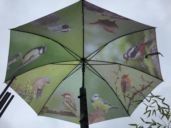Regenschirm, Motiv: deutsche Sing - Vögel
