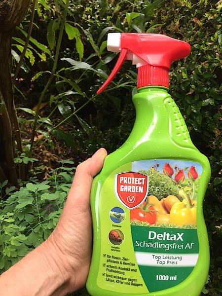 DeltaX Schädlingsfrei AF, für Buchsbaumzünsler, 1000ml Sprühflasche