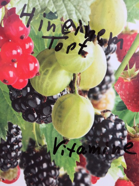 Fruit quatro , Obst Potpouri, Frucht Quartet (i.18cmT.)
